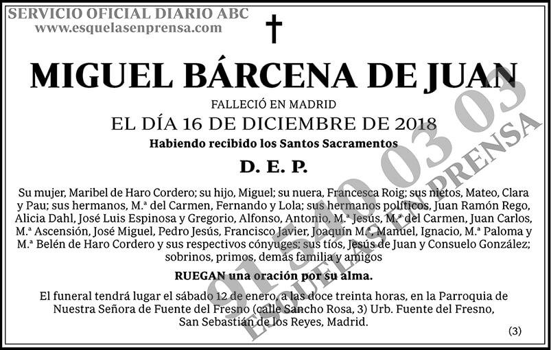 Miguel Bárcena de Juan