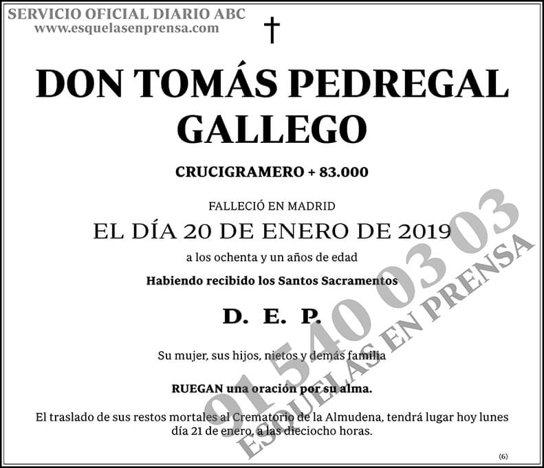 Tomás Pedregal Gallego