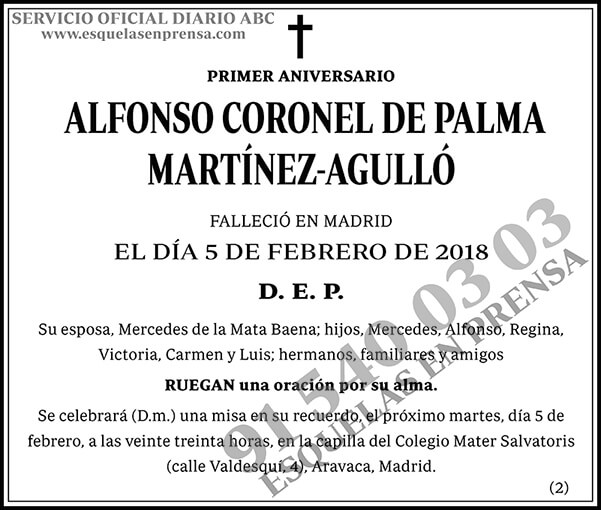 Alfonso Coronel de Palma Martínez-Agulló