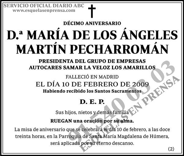 María de los Ángeles Martín Pecharromán