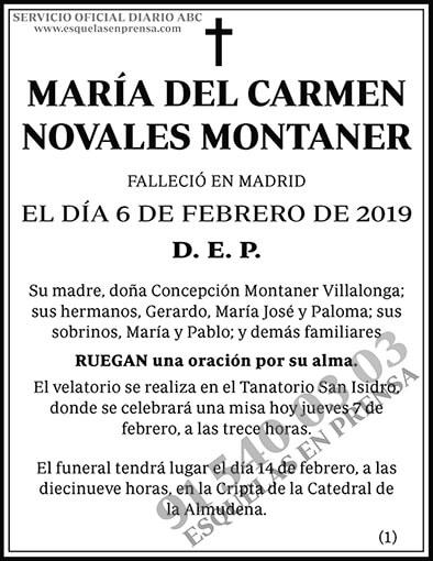 María del Carmen Novales Montaner
