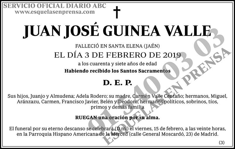 Juan José Guinea Valle