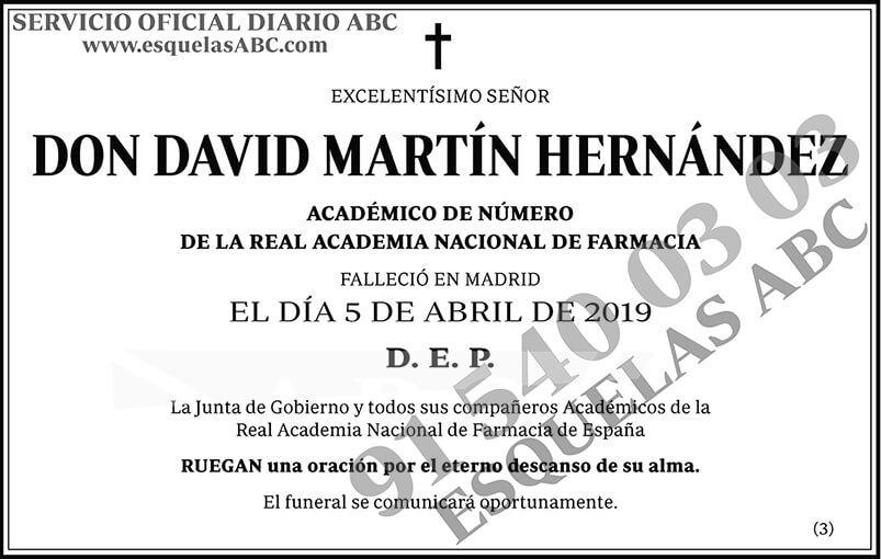 David Martín Hernández