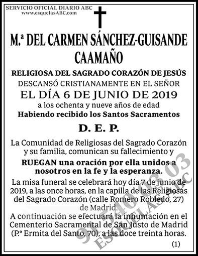 M.ª del Carmen Sánchez-Guisande Caamaño