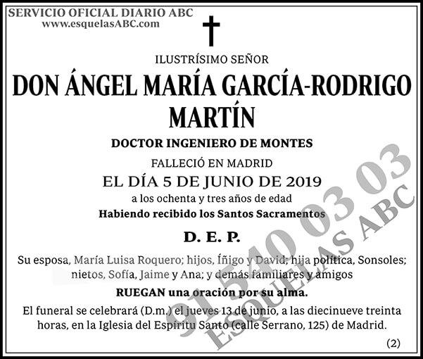 Ángel María García-Rodrigo Martín