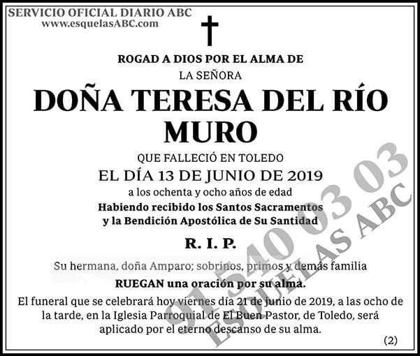 Teresa del Río Muro