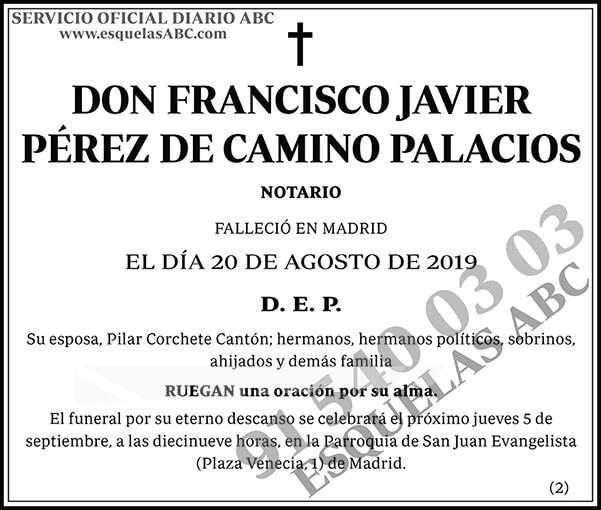 Francisco Javier Pérez de Camino Palacios