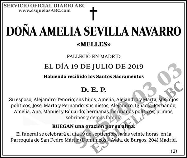 Amelia Sevilla Navarro