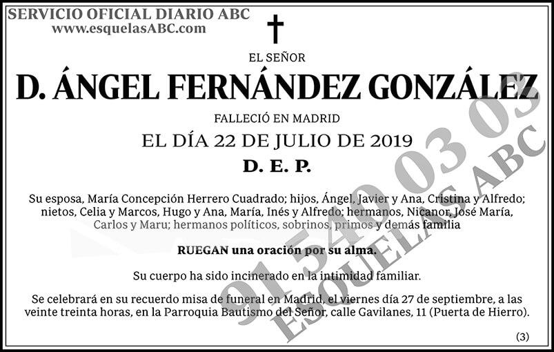 Ángel Fernández González