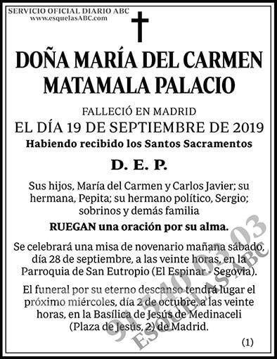 María del Carmen Matamala Palacio