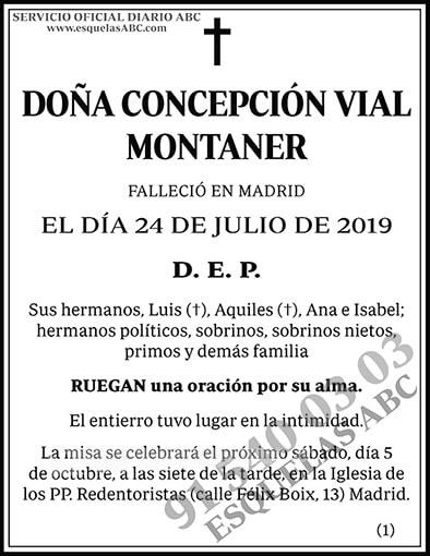 Concepción Vial Montaner