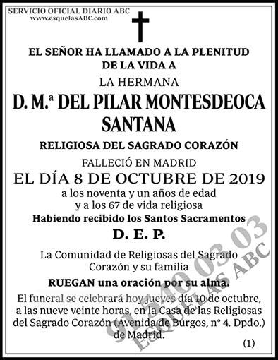M.ª del Pilar Montesdeoca Santana