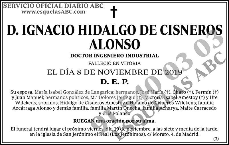 Ignacio Hidalgo de Cisneros Alonso