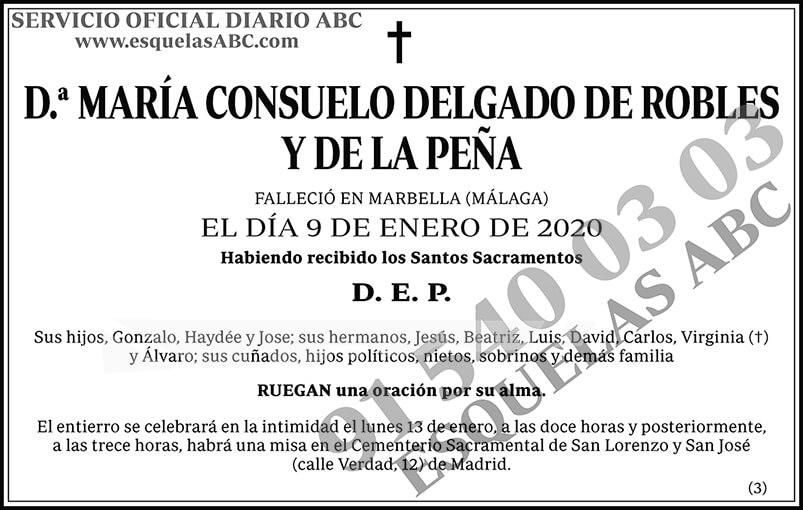 María Consuelo Delgado de Robles y de la Peña