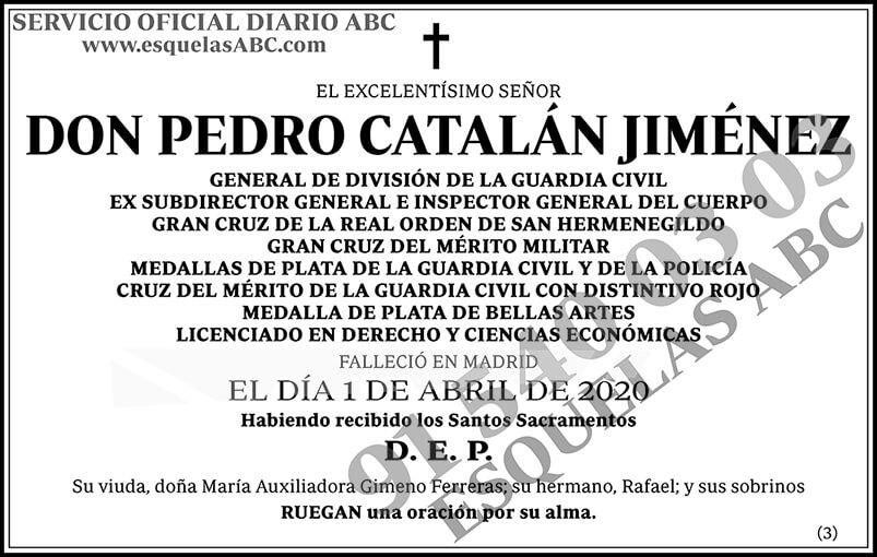 Pedro Catalán Jiménez