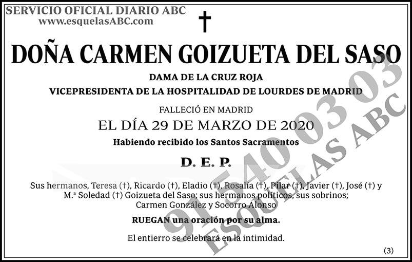 Carmen Goizueta del Saso