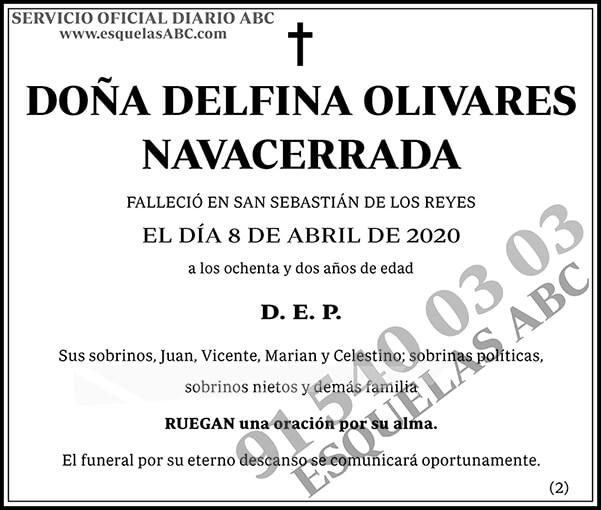 Delfina Olivares Navacerrada