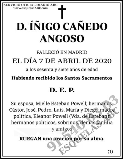 Íñigo Cañedo Angoso