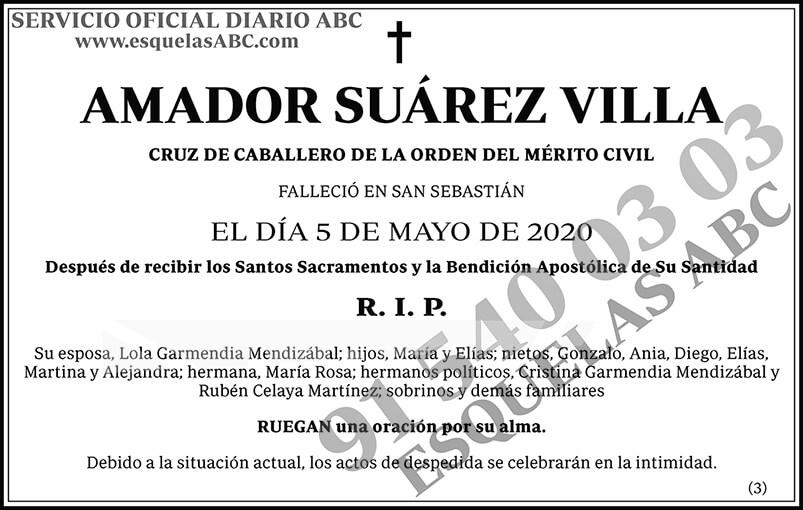 Amador Suárez Villa