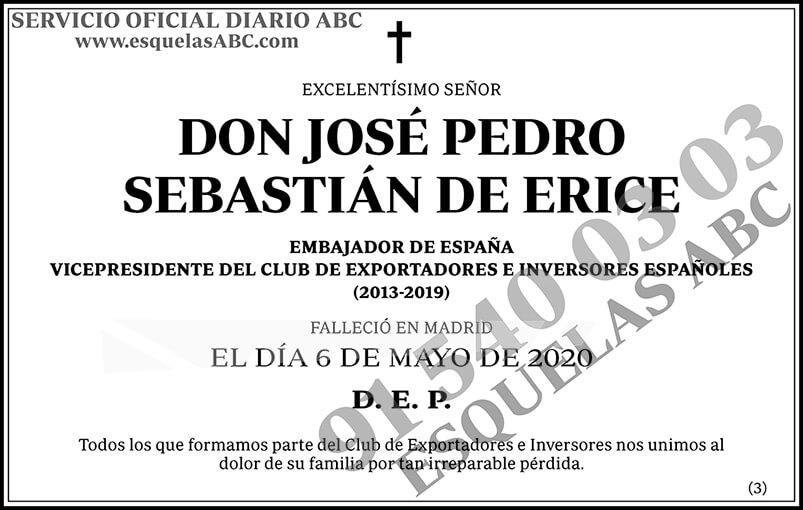 José Pedro Sebastián de Erice
