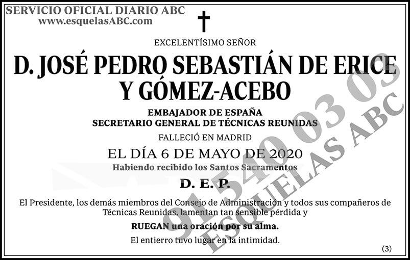 José Pedro Sebastián de Erice y Gómez-Acebo