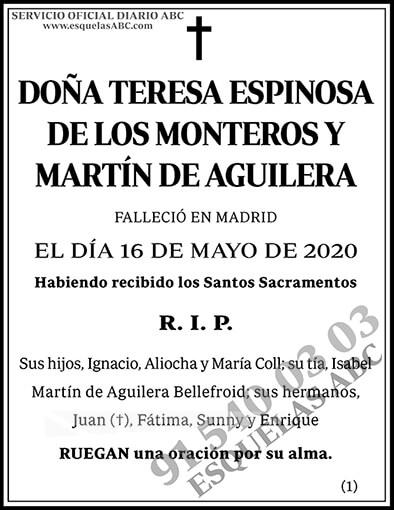 Teresa Espinosa de los Monteros y Martín de Aguilera