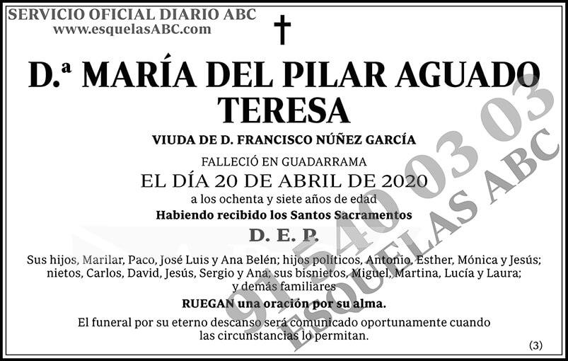 María del Pilar Aguado Teresa