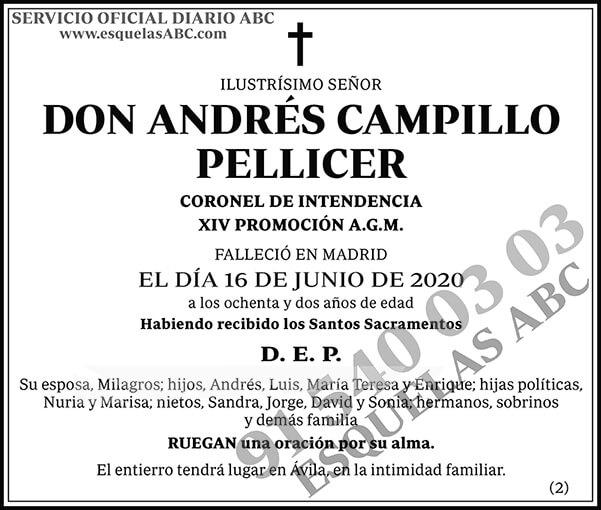Andrés Campillo Pellicer