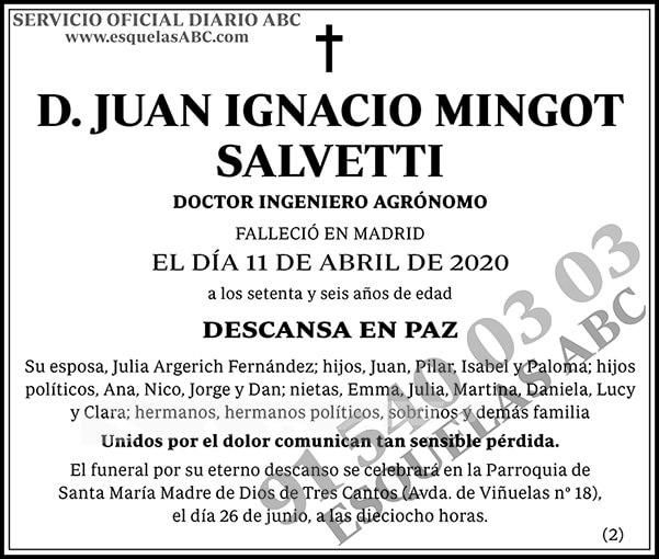 Juan Ignacio Mingot Salvetti