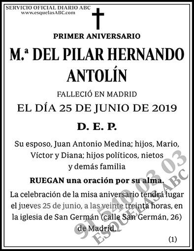 M.ª del Pilar Hernando Antolín