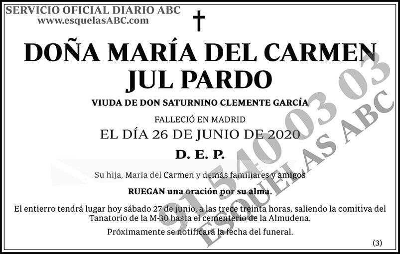 María del Carmen Jul Pardo
