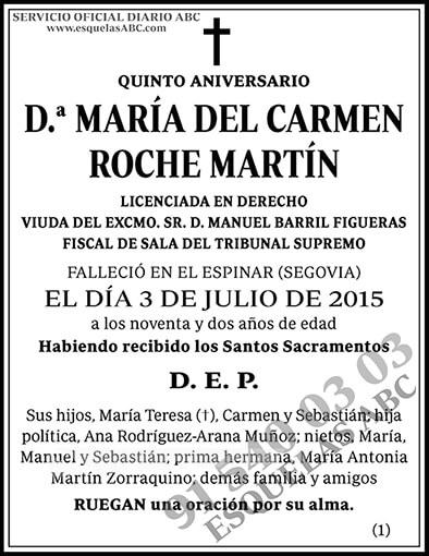 María del Carmen Roche Martín