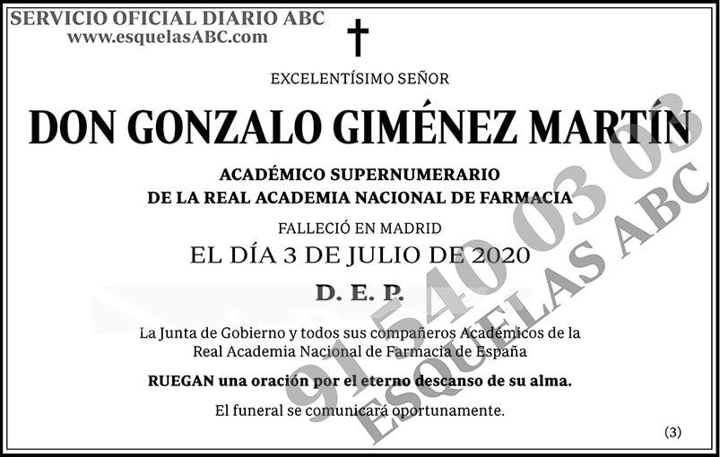 Gonzalo Giménez Martín