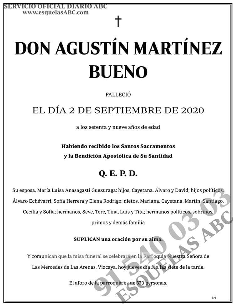 Agustín Martínez Bueno