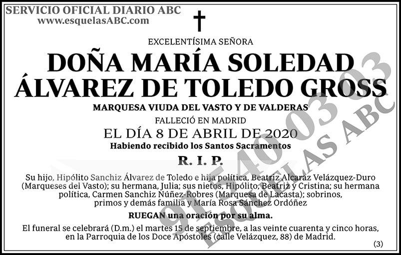 María Soledad Álvarez de Toledo Gross