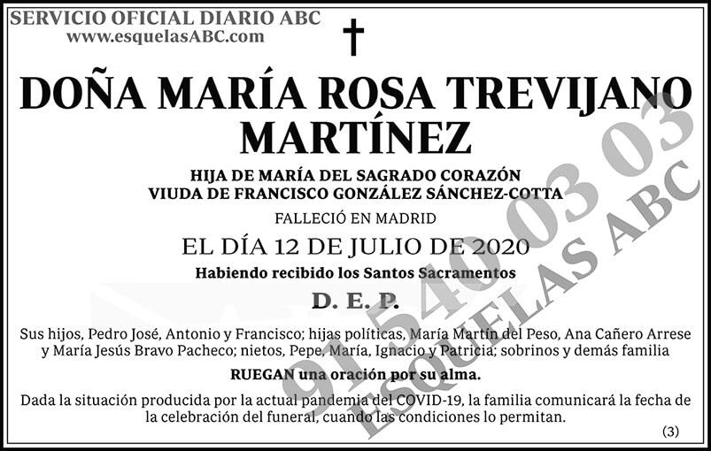 María Rosa Trevijano Martínez
