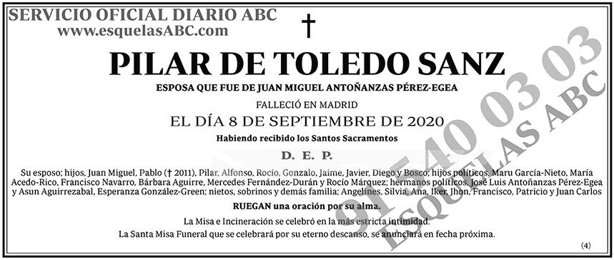 Pilar de Toledo Sanz
