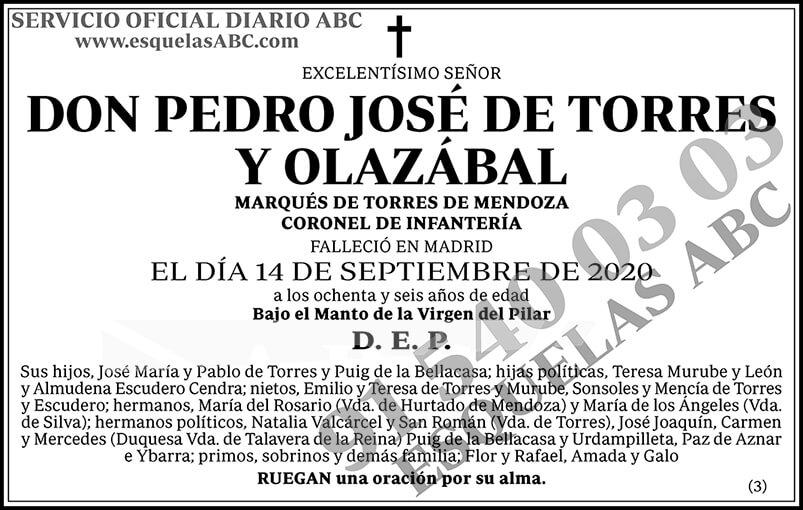 Pedro José de Torres y Olazábal