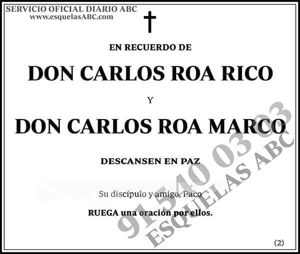 Carlos Roa Rico
