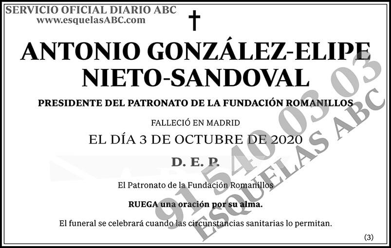 Antonio González-Elipe Nieto-Sandoval