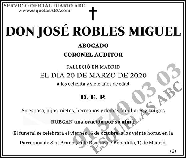 José Robles Miguel