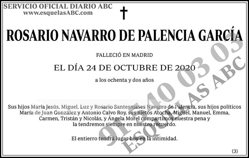 Rosario Navarro de Palencia García