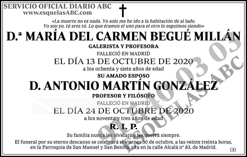 María del Carmen Begué Millán
