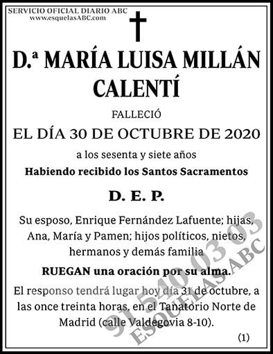 María Luisa Millán Calentí