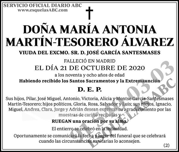 María Antonia Martín-Tesorero Álvarez