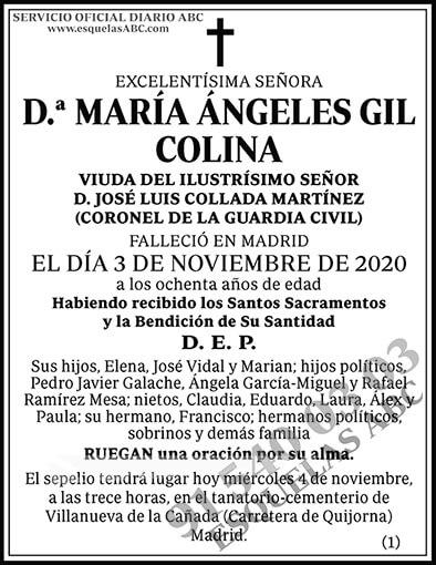 María Ángeles Gil Colina