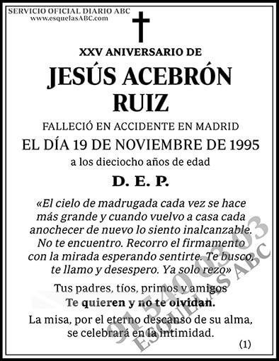 Jesús Acebrón Ruiz