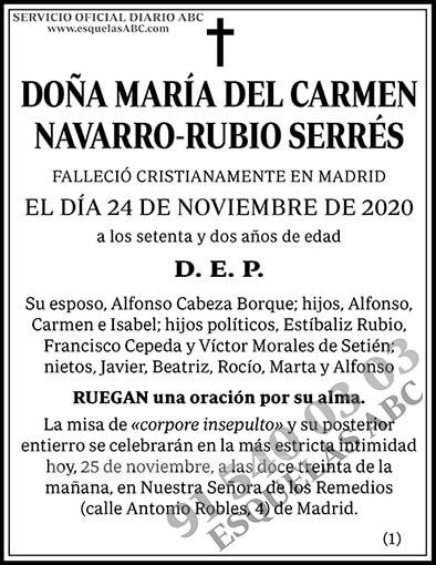 María del Carmen Navarro-Rubio Serrés