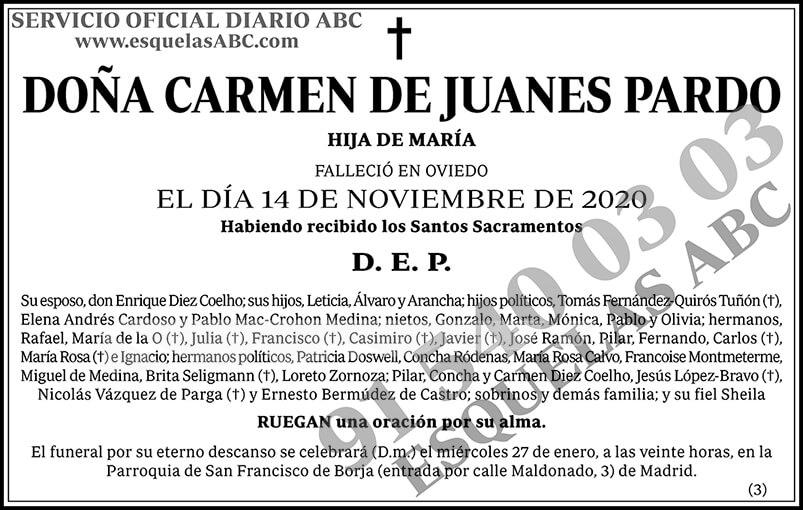 Carmen de Juanes Pardo