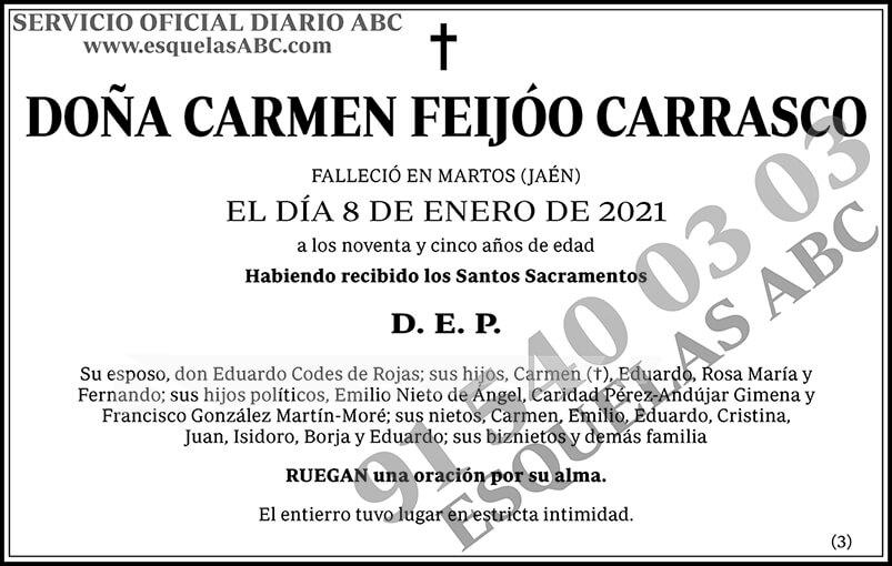 Carmen Feijóo Carrasco